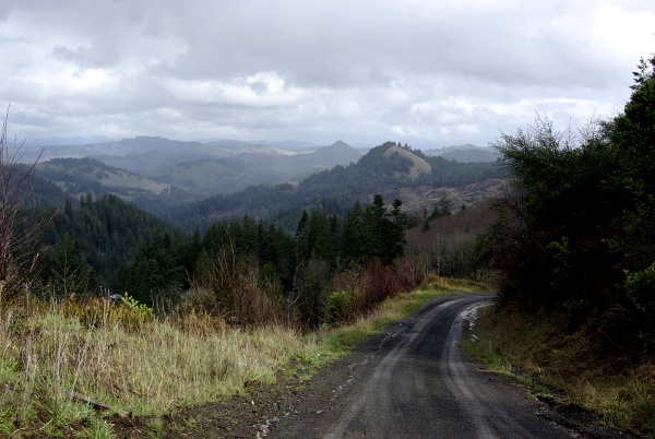Dement Creek Road
