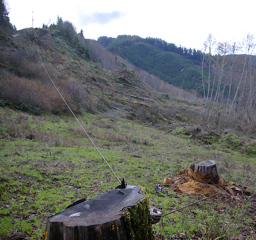 Stump and Yarder (little tower at the end of the line)